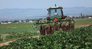 traktor_960