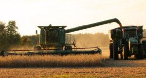 harvest-1825170_960_720